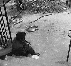 fun-black-and-white-street-photography-rene-maltete-3