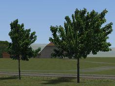 Laubbäume und -büsche Set 2