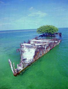 The Boca Grande Wreck off Boca Grande Key (1995). | Florida Memory