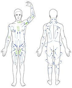 What Is Manual Lymph Drainage – Lymphatic Therapy – reflexzonen Massage Tips, Massage Techniques, Spa Massage, Cupping Therapy, Massage Therapy, Lymphatic Drainage Massage, Reflexology Massage, Lymph Nodes, Lymphatic System