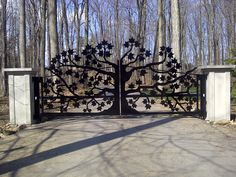 10 Intricate Metal Garden Gates Ideas For Your Outdoor Spaces Metal Garden Gates, Metal Gates, Wrought Iron Gates, Wooden Gates, Driveway Gate, Fence Gate, Fences, Driveway Design, Front Gates