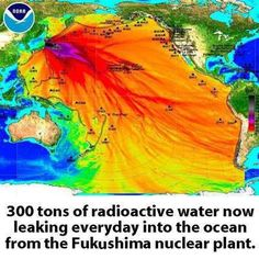 300 tons of radioactive water now leaking everyday into the ocean from the Fukushima nuclear plant | Anonymous ART of Revolution