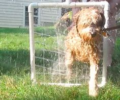 Cheap and Easy Pvc Handheld Dog Washer style