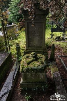 Moss-covered skull and crossbones on a grave at the Bruges cemetery in Belgium (Photo: Osbidian Urbex, Tunebm) Cemetery Statues, Cemetery Headstones, Old Cemeteries, Cemetery Art, Graveyards, Angel Statues, Dark Places, Places To See, Skull And Crossbones