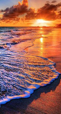 ocean shore....