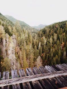 Vance Creek Bridge, Washington. PLEASE I have to go here