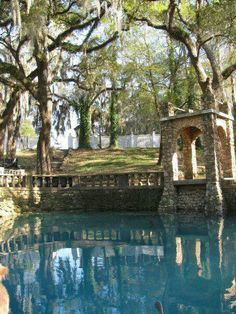 Visit gorgeous Radium Springs in Oh The Places You'll Go, Places To Travel, Places To Visit, Florida Travel, Travel Usa, Weekend Trips, Day Trips, Albany Georgia, Georgia Usa