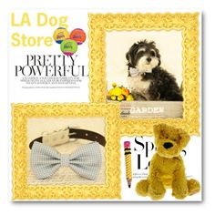"""""""LA Dog Store"""" by ladogstores ❤ liked on Polyvore featuring H&M"""