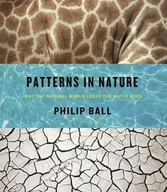 Download free Patterns in Nature: Why the Natural World Looks the Way It Does pdf