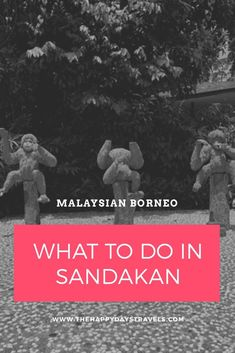 4 Educational Things to Do in Sandakan, Borneo - Malaysia Travel Guide Travel Goals, Travel Advice, Malaysia Travel Guide, Stuff To Do, Things To Do, Working Holidays, Wildlife Safari, Borneo, Travel Couple