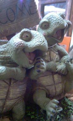TurtleSmile.