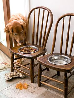 DIY dog food & water station out of old wooden chairs.