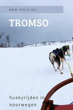 De stad Tromso ligt in het uiterste noorden van Noorwegen. Tromso heeft al eeuwen de bijnaam 'Parijs van het noorden'. De prachtige omgeving van Tromso maakt dat je de kou snel vergeet. Je kunt hier walvissen spotten en huskyrijden in Noorwegen! Tromso, Norway Travel Guide, Winter Destinations, Stavanger, Ultimate Travel, Where To Go, Finland, Denmark, Husky