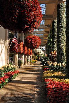 Longwood Gardens, PA.  Photo: KathyCat102 via Flickr.