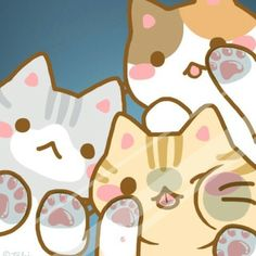 cute kitten cats kawaii pressed against the glass