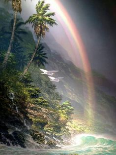 Arc-en-ciel / Rainbow