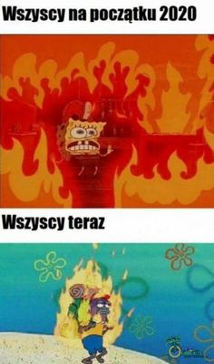 This Is Fine Meme, Polish To English, Funny Dogs, Funny Memes, Earth Poster, Doge Meme, Polish Memes, Burning House, Visit Vietnam