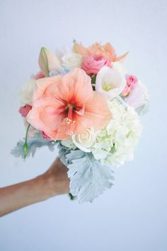 {A LOVELY Wedding Bouquet Made Up Of: Peach/Pastel Coral Amaryllis Pink Ranunculus White Tulips White Roses Light Pastel Green Hydrangea & Broad Leaf Dusty Miller} Hibiscus Bouquet, Hibiscus Wedding, Wedding Flowers, Tropical Wedding Bouquets, Pastel Bouquet, Tropical Weddings, Love Flowers, Beautiful Flowers, Ocean Flowers