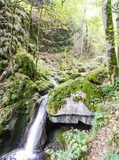 wandern-herbst-schweiz-biel Switzerland, Waterfall, Wanderlust, Around The Worlds, Travel, Outdoor, Life, Hiking Trails, Vacation