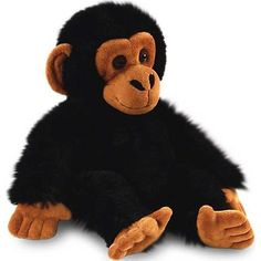 Our Small Cimp Soft Toy is an adorable Keel Toys monkey. It will make a much loved gift for adults and children of all ages. Order your plush monkey online or by telephone.