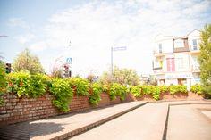 Czas na przemeblowanie - nowe dekoracje dla miast - Inspirowani Naturą | flower boxes for cities atech-pl.eu Flower Boxes, Flowers, Cities, Sidewalk, Urban, Plants, Window Boxes, Planter Boxes, Side Walkway