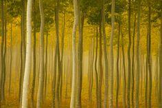 landscape photography | Interview: Landscape photography master Charlie Waite ...