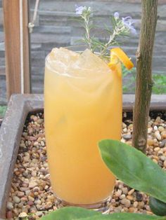 Orange Rosemary Blossom    1 sprig rosemary  1/2 oz. simple syrup  1 oz. PAMA  2 oz. gin  2 oz. orange juice    In a glass, muddle the rosemary, simple syrup, and PAMA together.  Add in one scoop of ice, gin, and orange juice.  Shake vigorously and strain over a glass of ice.  Garnish with a twist of orange zest and a rosemary blossom.