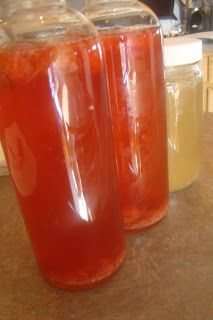 Nourished and Nurtured: How to Make Flavored Kombucha Tea http://nourishedandnurtured.blogspot.com/2013/03/how-to-make-flavored-kombucha-tea.html