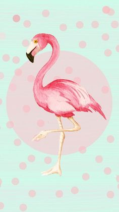 Case with mint pattern and pink flamingo illustration for inch Flamingo Party, Flamingo Print, Pink Flamingos, Flamingo Illustration, Trendy Wallpaper, Wallpaper Backgrounds, Iphone Wallpaper, Wallpapers, Flamingo Wallpaper