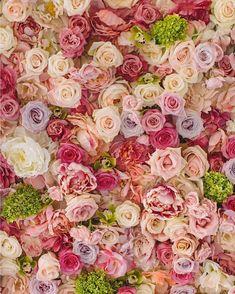 Wedding Decor Toronto Rachel A. Clingen Wedding & Event Design - Stylish wedding decor and flowers for Toronto Deco Floral, Motif Floral, Floral Wall, My Flower, Pretty Flowers, Summer Flowers, Cut Flowers, Colorful Flowers, Dried Flowers