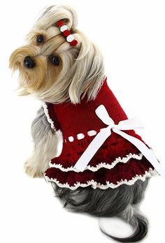 Ruby Red Dog Sweater Dress - Hand Knitted