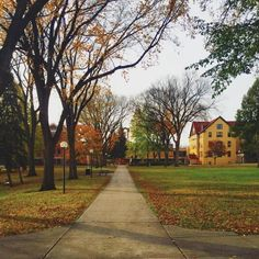 Whatever you can do or dream you can begin it. Boldness has genius power and magic in it. - Johann Wolfgang von Goethe  Make November magical Cobbers. #cordmn (Photo: @littlespaceprince)