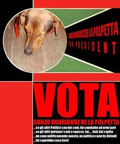 Gonzo Rodrigues De La Polpetta for President