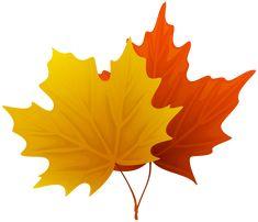 Fall Maple Leaf Clip Art
