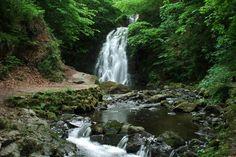 Glenoe Waterfall, image taken by Steven Black of S Black Photo. Waterfall, Outdoor, Image, Black, Outdoors, Black People, Waterfalls, All Black, Outdoor Games
