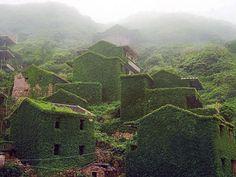 Abandoned_Village_Nature_Smith_Journal_5.jpg