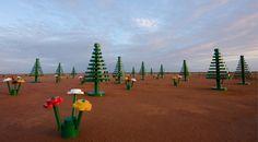Magischer Lego-Wald im australischen Outback