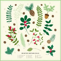 Illustrations and style guide development for Martha Stewart Craft Woodland Christmas products and scrapbook materials. All photos courtesy of MSLO. Christmas Leaves, Christmas Plants, Woodland Christmas, Christmas Design, Christmas Art, Winter Christmas, Vintage Christmas, Christmas Decorations, Christmas Greenery