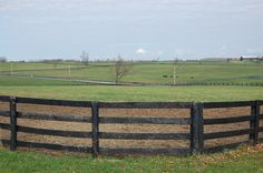 This horse facility is home to some of the top sport horse competitors in the region and offers an excellent blend of size, location, and horse facilities.  At just over 78 acres, this property has a combination of huge, lush fields plus paddocks - all with 4 board fencing and auto waterers.  3 barns with 26 stalls, a 100' x 200' indoor riding arena with sand footing; a 100' x 200' outdoor riding arena with sand footing; and 3 BR 2 BA manager's home.  $1,395,000. Stalls, Fencing, Barns, Acre, Lush, Fields, Indoor, Horses, Sport