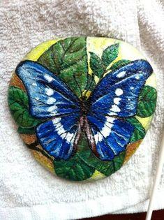 butterfly: