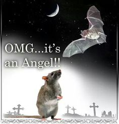 Mouse Angel