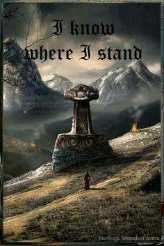 Norse Pagan, Old Norse, Viking Symbols, Norse Mythology, Rune Viking, Viking Life, Viking Warrior, Viking Hall, Symbole Viking