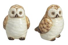 owl salt and pepper shakers. I have some that are wayyyy cuter :)