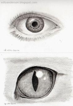 Ogen / Eyes