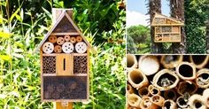 Construye+un+hotel+¡para+abejas!