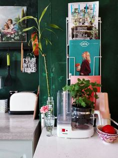 Kitchen details. Magazines. Herbs. Green kitchen.