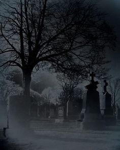 DECK THE HOLIDAY'S: WHAT MAKES THE GRAVEYARD A SPOOKY AND SCARY PLACE?