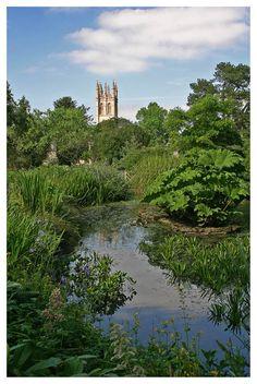 University of Oxford Botanic Garden with Magdalen College in the background.  Oxford, England Copyright: Txxx Bxxx