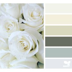 Spring ❤ liked on Polyvore featuring design seeds, backgrounds, colors, fillers, flowers and effect