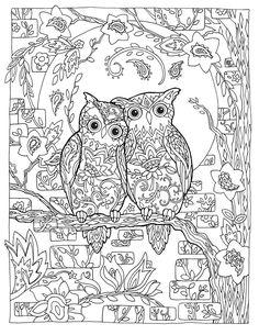 "Creative Haven Owls Coloring Book by Marjorie Sarnat, ""Paisley Love Birds"""
